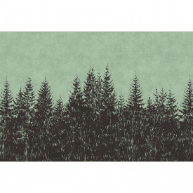Papier peint panoramique black forest 2 DD110516 Livingwalls Walls by Patel