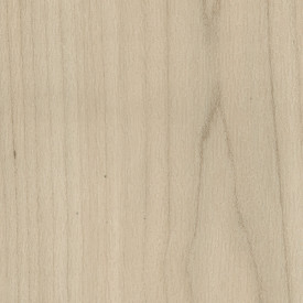 "Amtico Spacia Xtra ""Pale Maple"" (18,5 x 122 cm)"