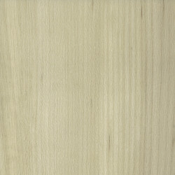 "Amtico Spacia Xtra ""White Maple"" (18,5 x 122 cm)"